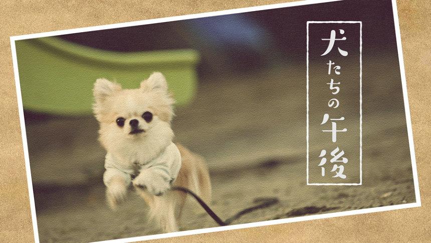 『犬たちの午後』 ©「Iターン」製作委員会