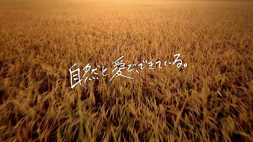 いわて純情米CM「稲の想い」篇より
