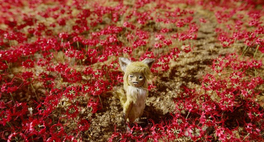 『劇場版 ごん ‒ GON, THE LITTLE FOX -』 ©TAIYO KIKAKU Co., Ltd. / EXPJ, Ltd