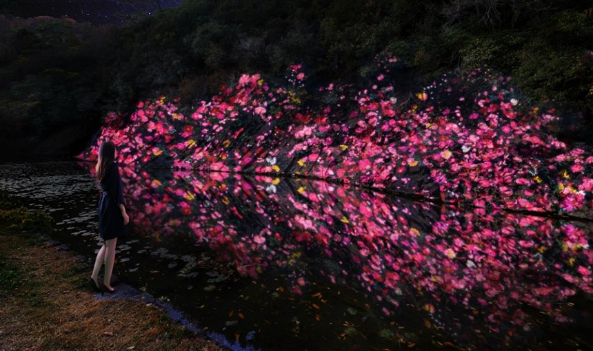 チームラボ『増殖する生命の石壁 - 紫雲山 /  Ever Blossoming Life Rock Wall  - Mt. Shiun』teamLab, 2020, Digitized Nature, Sound: Hideaki Takahashi