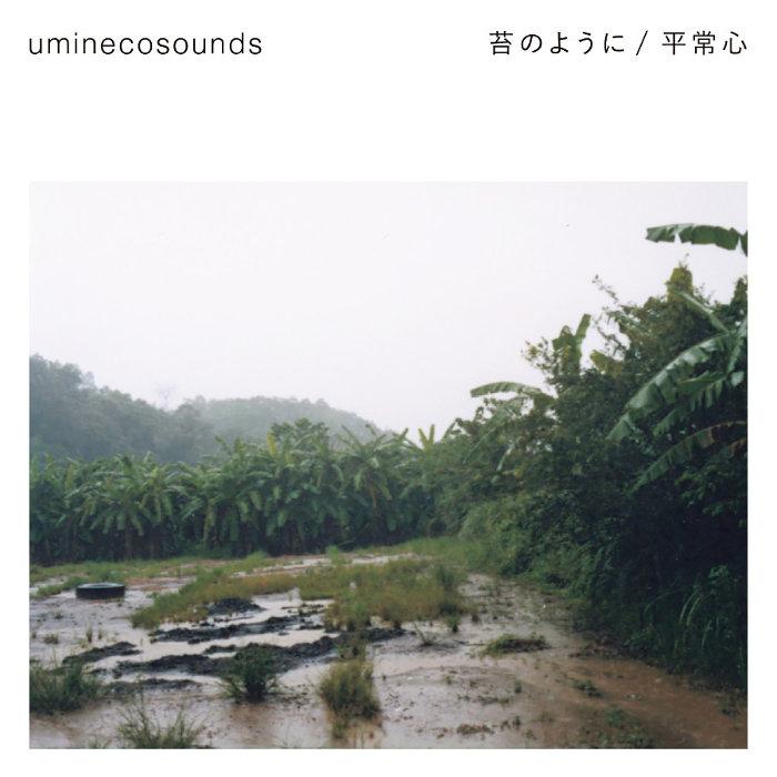 uminecosounds『苔のように/平常心』ジャケット