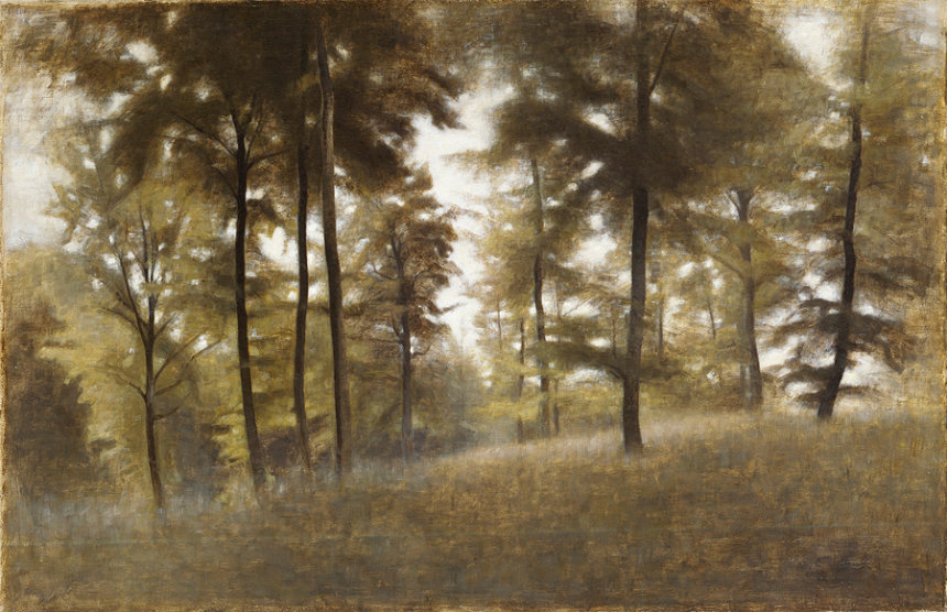 ヴィルヘルム・ハマスホイ『若いブナの森、フレズレクスヴェアク』1904年 デーヴィズ・コレクション蔵 The David Collection,Copenhagen