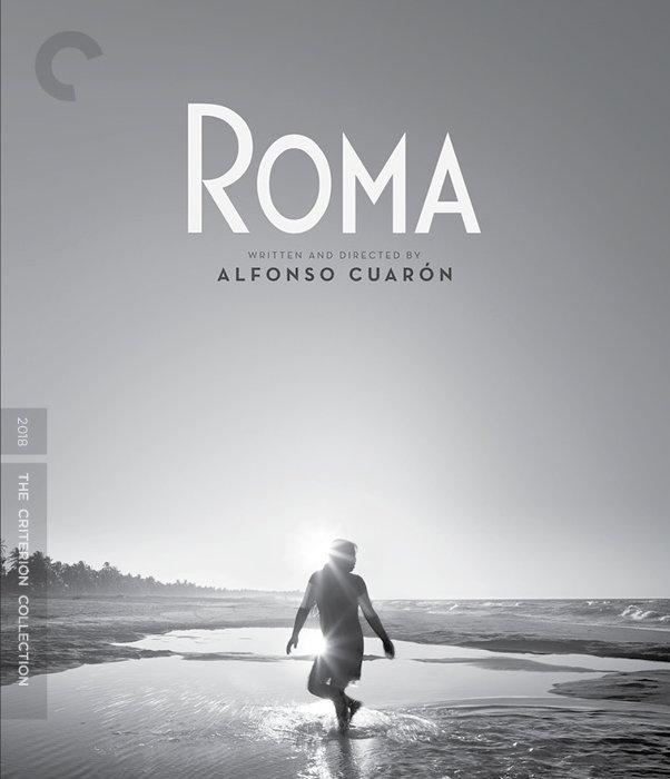 『ROMA/ローマ』ジャケット ©2018 Espectáculos Fílmicos El Coyúl, S. De R.L. De C.V. All rights reserved.