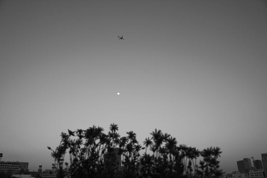 ハービー・山口『新しい飛行ルートとスーパームーン 2020』 © Herbie Yamaguchi