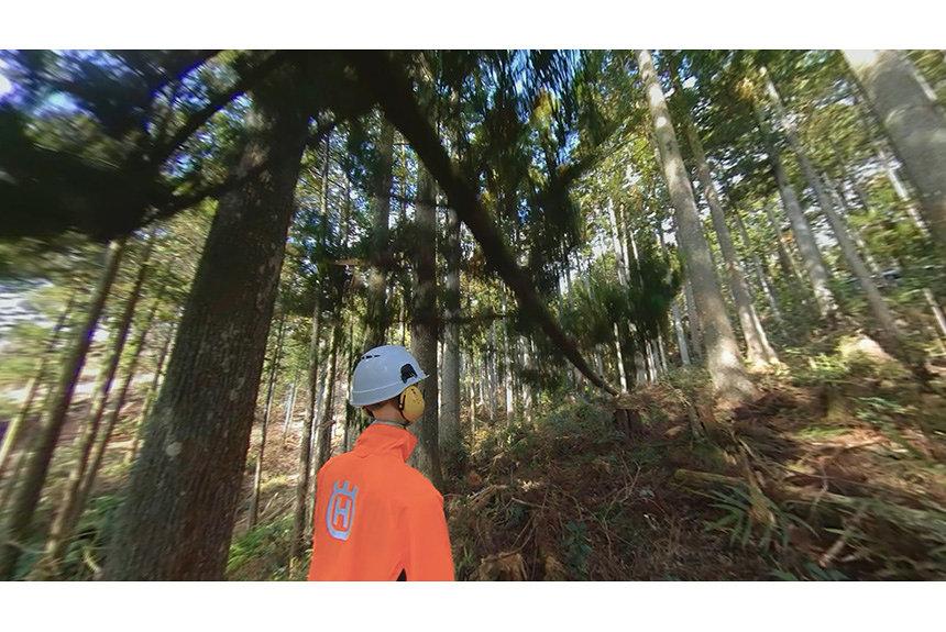 VRで安全に林業研修が行える『林業安全教育360VR』