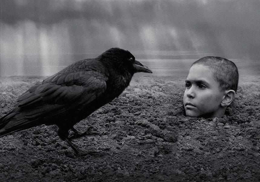 『異端の鳥』 ©2019 ALL RIGHTS RESERVED SILVER SCREEN ČESKÁ TELEVIZE EDUARD & MILADA KUCERA DIRECTORY FILMS ROZHLAS A TELEVÍZIA SLOVENSKA CERTICON GROUP INNOGY PUBRES RICHARD KAUCKÝ
