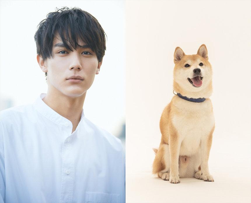 『犬部!』 ©2021「犬部!」製作委員会