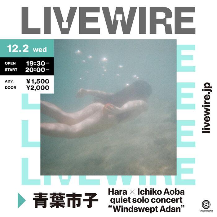 "『Hara X Ichiko Aoba quiet solo concert ""Windswept Adan""』ビジュアル"