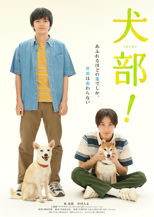 『犬部!』ティザービジュアル ©2021『犬部!』製作委員会