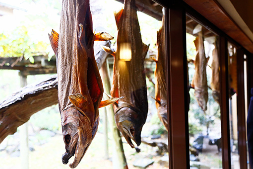 村上名物・吊るし鮭。鮭のおかげで豊かになった村上藩が「鮭に切腹させてはいけない」という理由から、腹の部分につなぎ目を1か所残すのが伝統