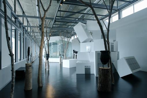 越後妻有里山現代美術館[キナーレ]展示風景
