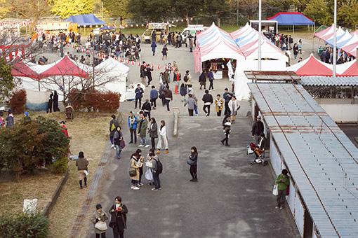 大人の文化祭『NEWTOWN』 校庭の様子(撮影:栗原論)