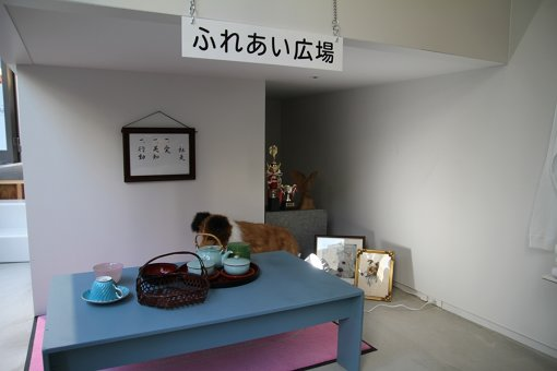 ふれあい広場には平野紗季子が訪れるかもしれない