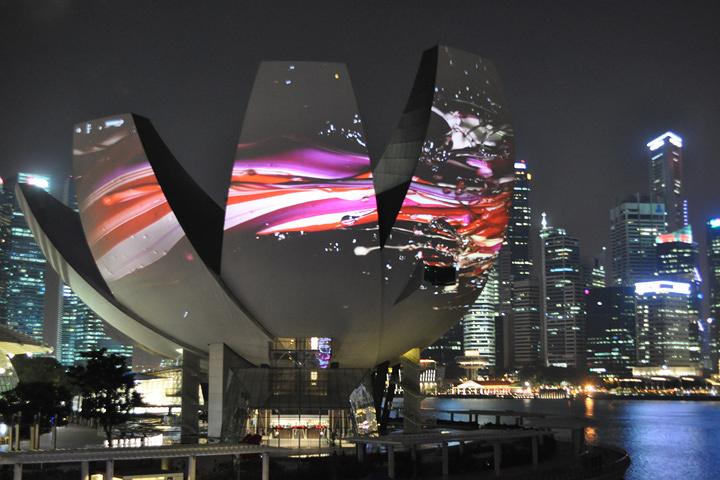 「日本はダサいと思っていた」 領域を横断する、あるメディアアーティストの挑戦