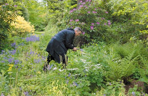 自宅の庭で花を摘むドリス・ヴァン・ノッテン ©2016 Reiner Holzemer Film - RTBF - Aminata bvba - BR - ARTE