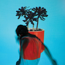 Local Natives『Sunlit Youth』