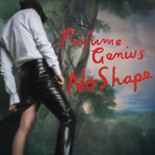 Perfume Genius『No Shape』
